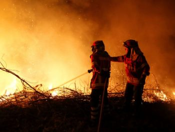 Portugal and Spain wildfires: Dozens killed and injured