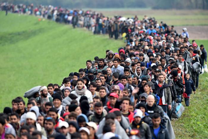 Более 258 млн человек в мире являются мигрантами, заявили в ООН