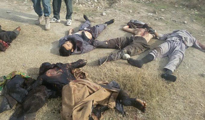 Семь вооруженных талибов были убиты и трое были арестованы в провинции Кундуз
