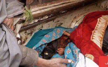 В Гильменде в результате взрыва семь мирных жителей погибли