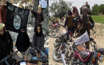 11 جنگجوی گروه تروریستی داعش در ولایت جوزجان از سوی طالبان مسلح کشته شدند