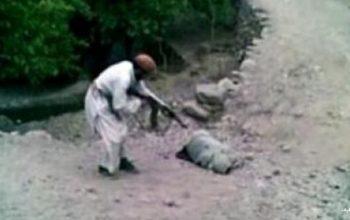 فرمانده طالبان مسلح در بدخشان نامزدش را به قتل رساند