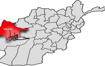 افراد گروه تروریستی طالبان سه سرباز پولیس را در هرات به قتل رساند