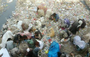 معتادین را از ساحات مزدحم شهر کابل جمع آوری کردند