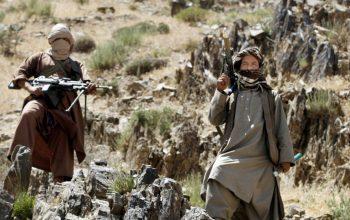 جا به جای صدها تروریست طالب در مرز های جاغوری و مالستان/ معرفی ولسوال برای این ولسوالی ها