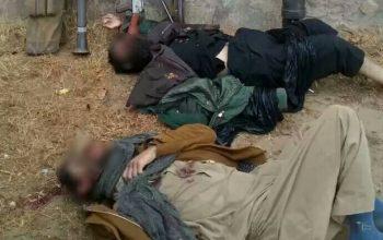 کشته شدن 2 فرمانده کلیدی گروه تروریستی طالبان در بادغیس