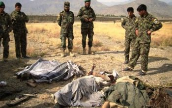کشته شدن 7 تروریست طالب در ننگرهار