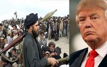 پاسخ مثبت آمریکا به گروه طالبان/ کاخ سفید با گروه تروریستی طالبان وارد مذاکره مستقیم می شود