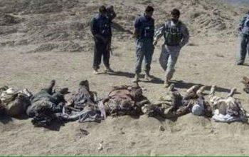 تروریستان طالب در کمینی برای نیروی نظامی کشور تلفات سنگین را متحمل شدند