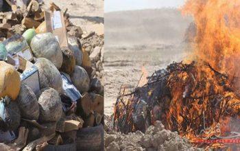 آتش زدن نزدیک به 500 کیلوگرام موادمخدر در سرپل