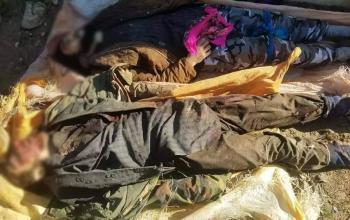 یک فرمانده کلیدی طالبان در فاریاب کشته شد