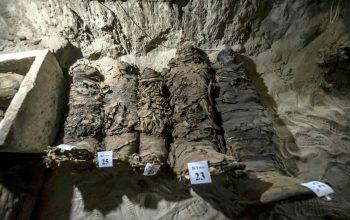 رونمایی از مومیایی های تازه عصر فراعنه در مصر