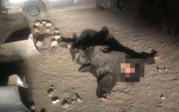 یک اختطاف چی مشهور در هرات کشته شد