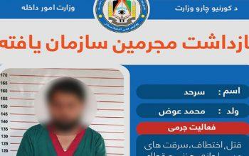 سرگروه یک شبکه جرمی سازمان یافته در کابل بازداشت شد