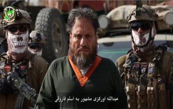 رهبر شاخه خراسانِ داعش بازداشت شد