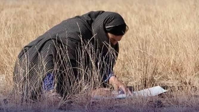 دختران دایکندی در امتحان کانکور